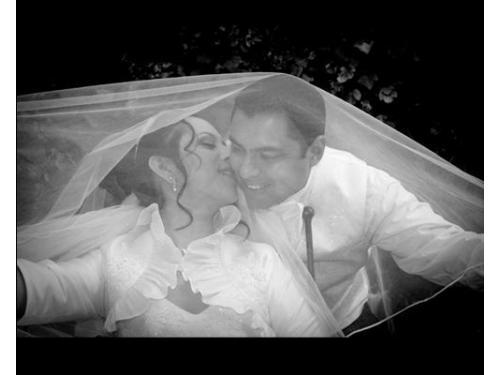 Románticas fotografías