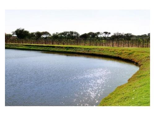 Lago y preciosos jardínes