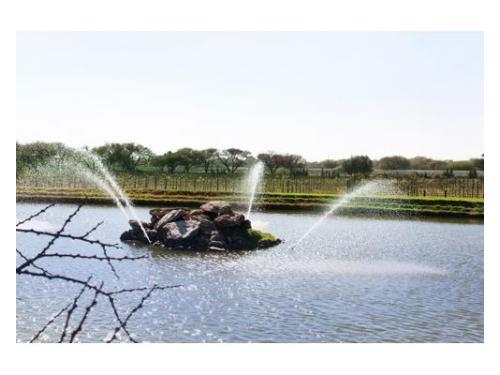 Lago con fuente natural