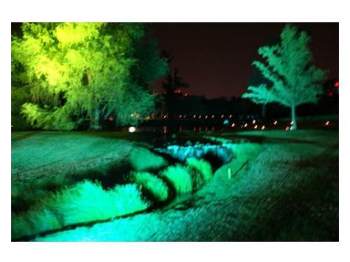 Iluminación en el exterior de tu evento