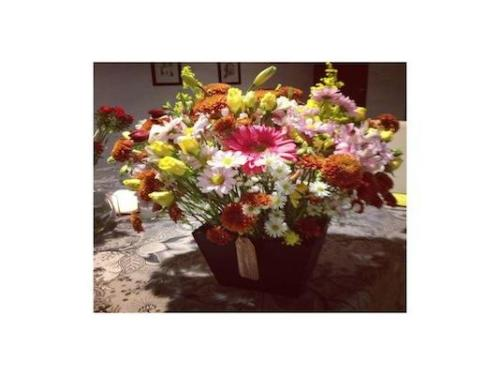 Flores para cualquier ocasión