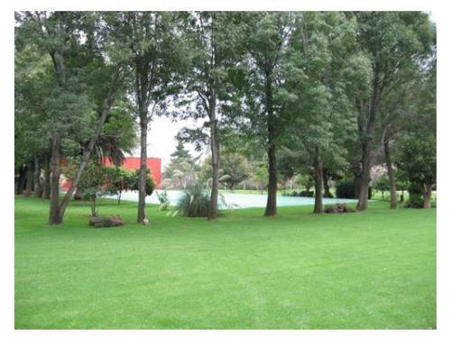 Jardín con excelente mantenimiento