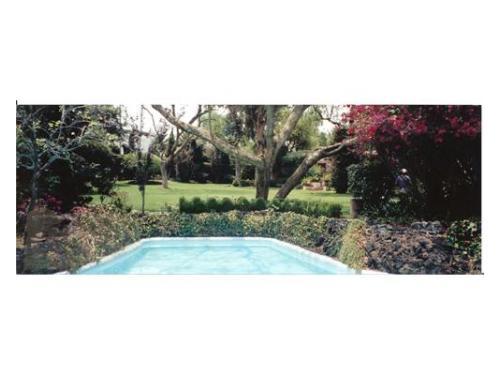 Pequeña aleberca de grupo d´elhore jardines