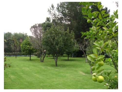 Jardín para tu boda