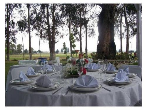 Amplio jardín para bodas