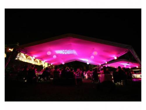 Carpa con luz rosa