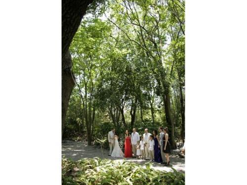 Novios y familiares en jardín huayacán