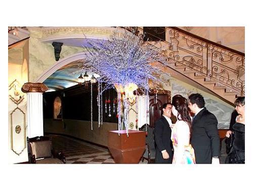 Hermosas instalaciones para una boda inolvidable