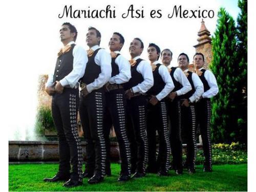 Mariachi profesional