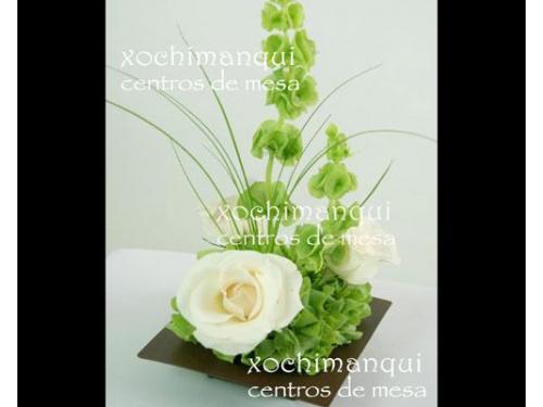 Flores totalmente naturales