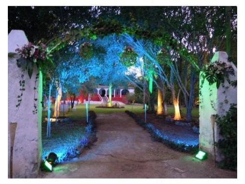 Entrada a jardines con iluminacion personalizada