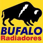 Bufalo Radiadores - Fabricante de Radiadores - Monterrey, Mexico
