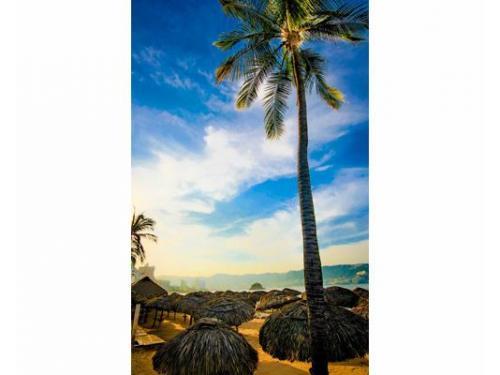 El paraíso en acapulco