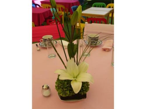 Lilis para decorar