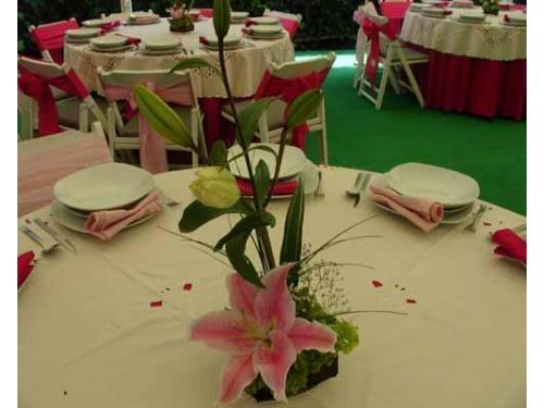 Variedad en centros de mesa