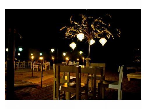 Árbol iluminando la mesa