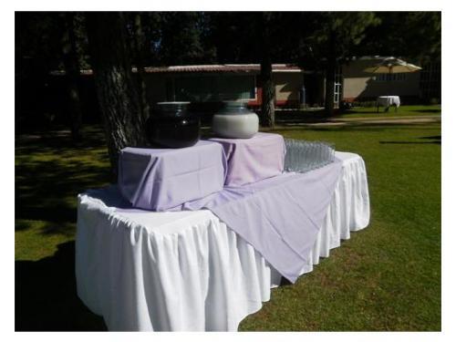 Mesa con aguas frescas para invitados