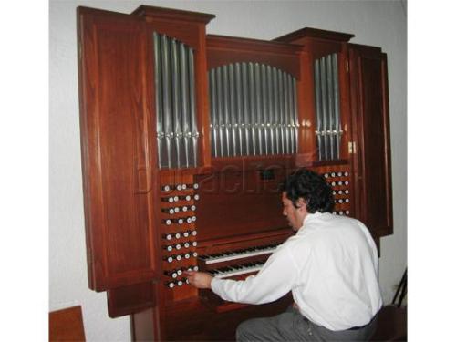Organo en ceremonia