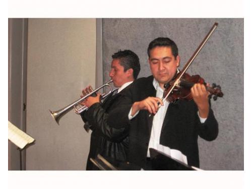 Tocando los violines
