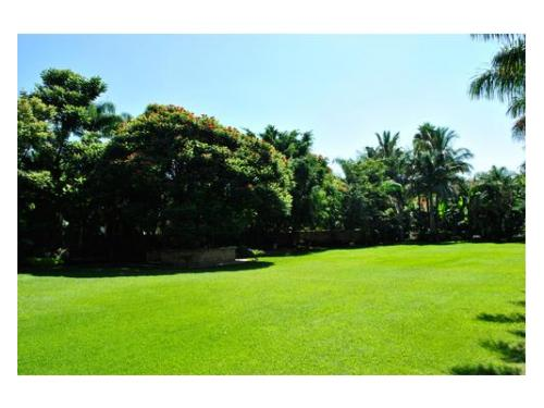 Quinta real cuernavaca restaurantes citiservi for Jardin quinta real morelos