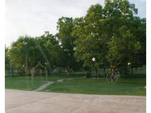 Jardines amplios y hermosos